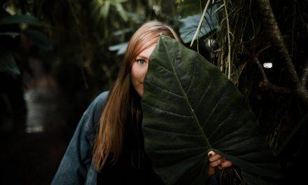Prečo je vo svete toľko neviditeľných introvertov?